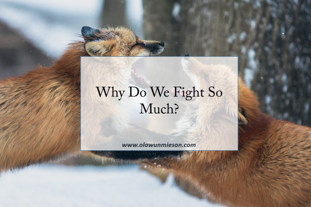 Why Do We Fight So Much?